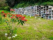 10 Graveyard San Pedro de Vilcabamba