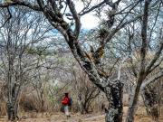 03 Mandango trail