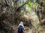 09 Trail Lambunuma-Masanamaca