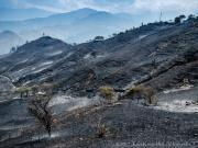 Buschfire San José-Mollepamba, Vilcabamba
