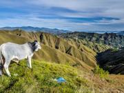 01 View from Lambunuma-trail into Quebrada Puliche