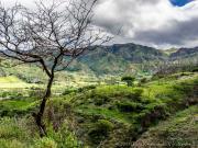 08 Quinara across rio Piscobamba