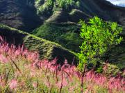 04 View on loma Nanaro from the Sunungo-ridge