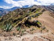 06 Ridge trail Lambanuma pass-Cerro Sanangui