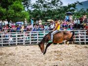 21 Rodeo Montubio