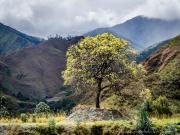 14 Landscape near, Masanamaca