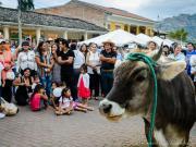El Torro, premio de la Rifa, fiestas de Vilcabamba