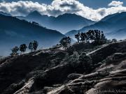 Finca -Salvaje- & Podocarpus from the rock view point