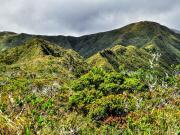 11 Ridgetrail of Mirador-loop, Cajanuma, PN Podocarpus