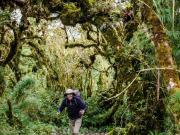 07 Miradores trail, Cajanuma, PN Podocarpus
