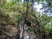 03 El Infiernillo trail, Chichilpamba valley, Masanamaca