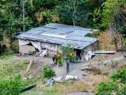 09 Pig farm Quebrada Huallishinuma