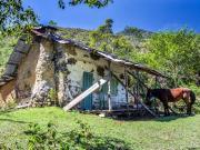 12 Refugio Las Palmas, 2400m