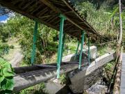 12 Sendero Ecologico, Puente Ermita, near Pueblo Nuevo 01