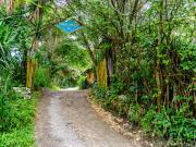 04 Entrance of Rumi Wilco reserve