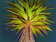 03 Yuca-plant on canal road