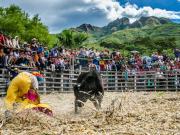 18 Rodeo Montubio