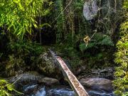 10 Log-bridge over Solomaco river on the trail to las Palmas reserve