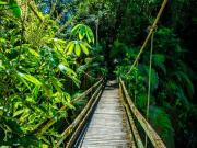 10 Puente Campesino, Rio Bombuscaro