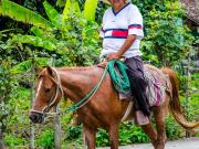 03 Don Roger Toledo on the way to his Finca