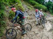 13 Podocarpus Bike-Trip with Chino Bike