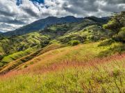 05 Pasture on cerro Grande